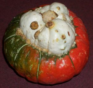 Le giraumon est une variété de potiron, appartenant à l'espèce Cucurbita maxima, de la famille des Cucurbitaceae.